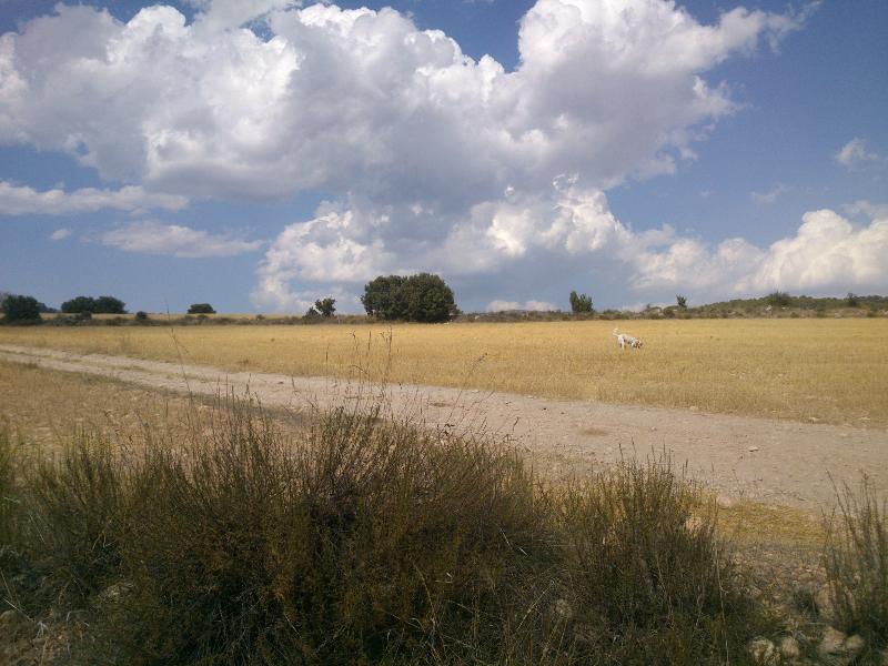 uitzicht vanuit Cortijo Chalan
